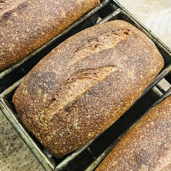 Whole Wheat Pullman